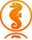 seepferdchen_logo